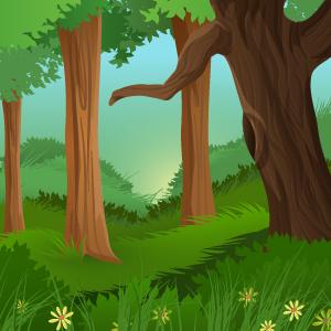 forêt-enchantée
