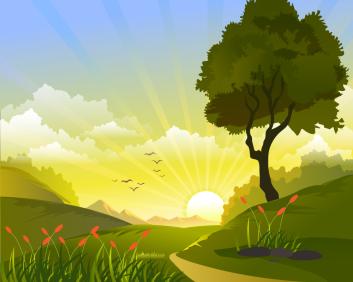 paysage soleil oiseaux et nature-01